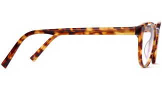 Side View Image of Whalen Eyeglasses Collection, by Warby Parker Brand, in Striped Acorn Tortoise Color