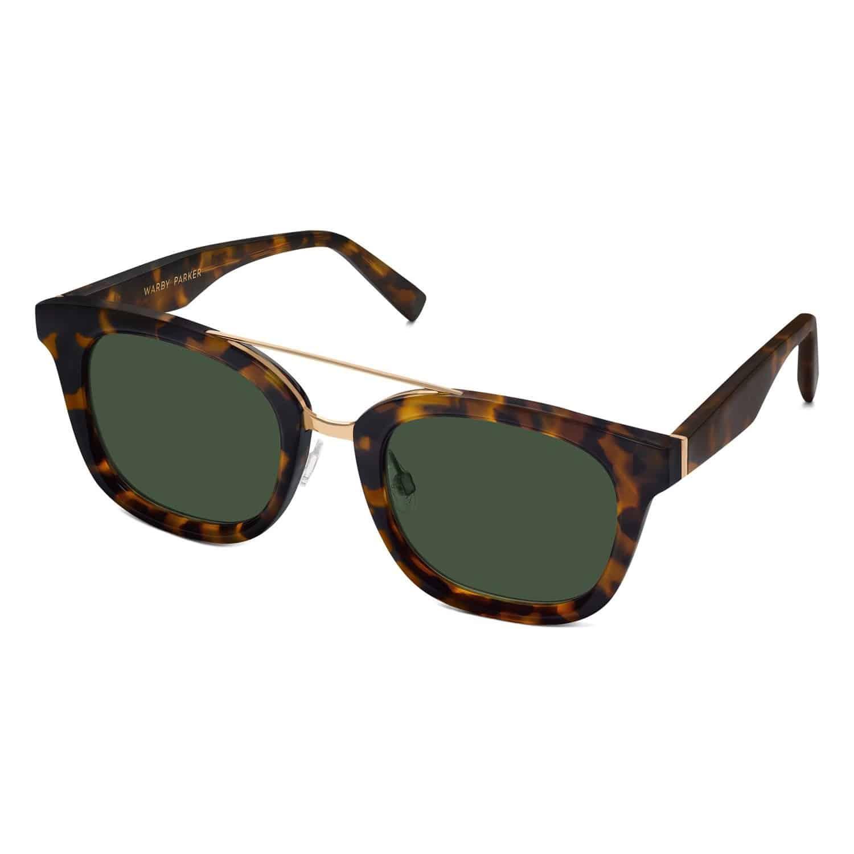 Epigraph Eyeglasses & Sunglasses Collection