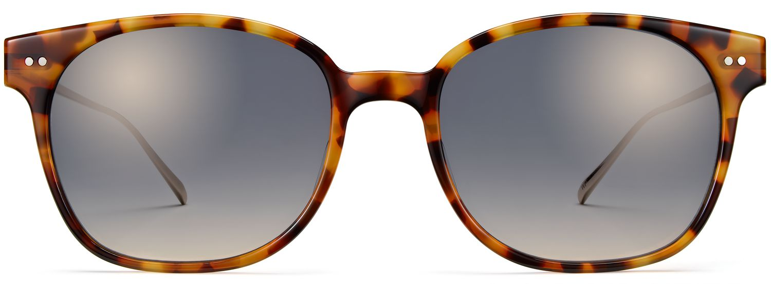 Front View Image of Tilden Sunglasses Collection, by Warby Parker Brand, in Acorn Tortoise with Polished Gold Color