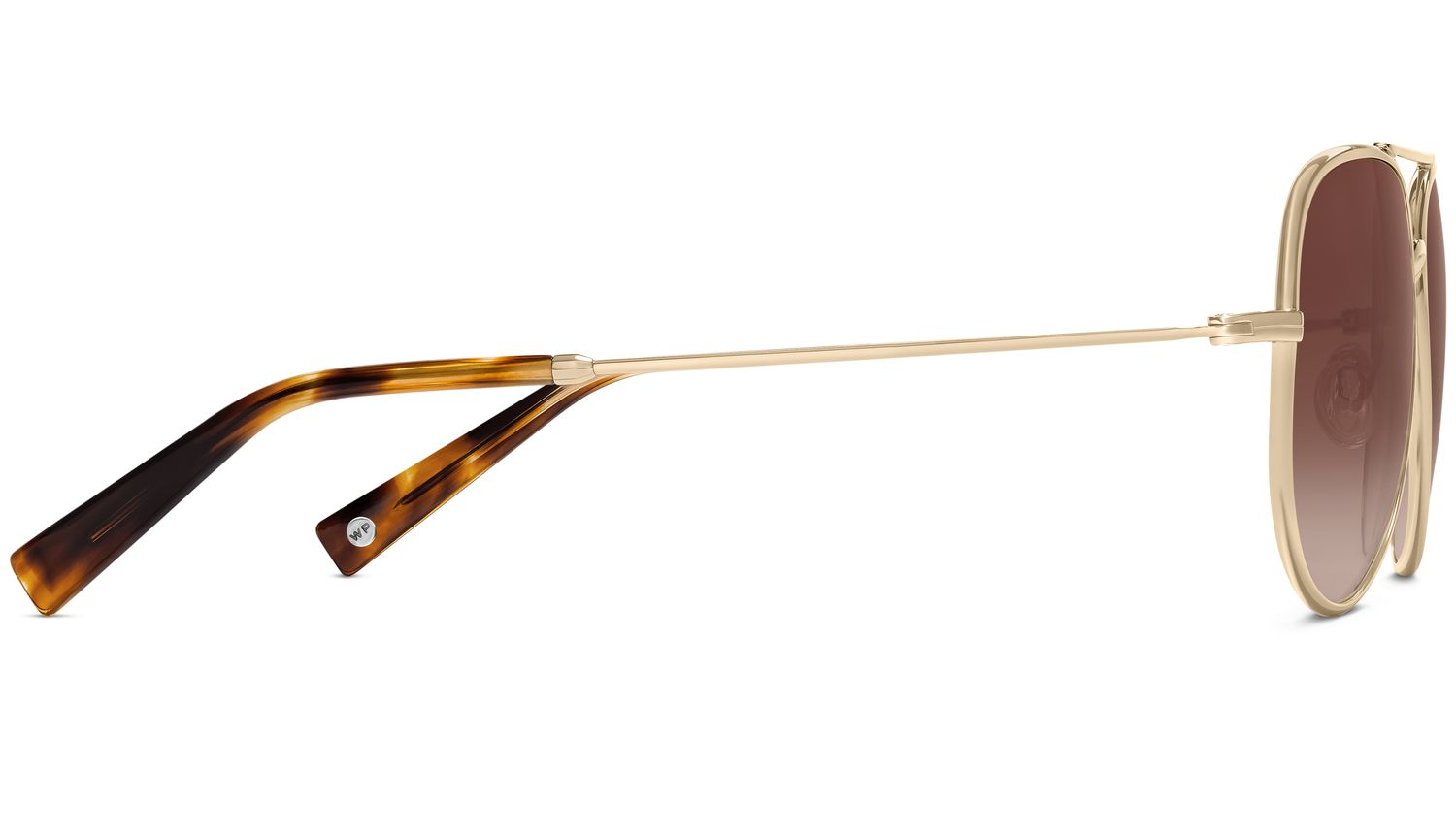 Raider Sunglasses in Polished Gold