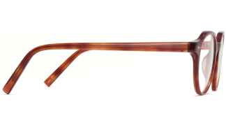 Side View Image of Begley Eyeglasses Collection, by Warby Parker Brand, in Amber Tortoise Color