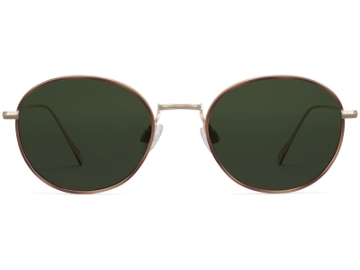 Front View Image of Colvin Sunglasses Collection, by Warby Parker Brand, in Polished Gold with Savanna Tortoise Color