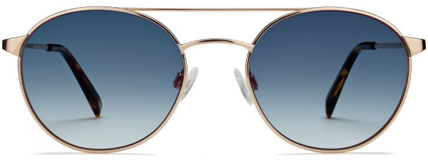Front View Image of Fisher Sunglasses Collection, by Warby Parker Brand, in Polished Gold Color