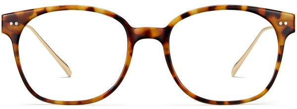 Front View Image of Tilden Eyeglasses Collection, by Warby Parker Brand, in Acorn Tortoise with Polished Gold Color
