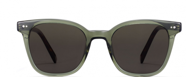 Front View Image of Griffin Sunglasses Collection, by Warby Parker Brand, in Seaweed Crystal with Cognac Tortoise Color