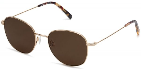 Angle View Image of Cyrus Sunglasses Collection, by Warby Parker Brand, in Polished Gold Color
